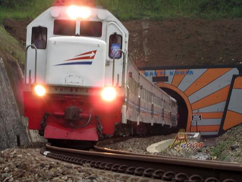 Terowongan Kereta Api Dwi Bakti Karya