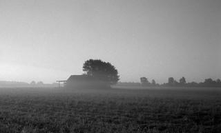 Old barn at the dawn