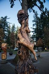 DSC_7941 (Copy) (pandjt) Tags: hope hopebc britishcolumbia carving carvings chainsawcarving sculpture publicart artwalk hopeartwalk woodcarving artwork