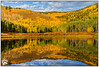 Willow Lake 100311-6138-W.jpg (RobsWildlife.com © TheVestGuy.com) Tags: 100311 autumn utah canoncamera foliage aspen willowheights nature falltreefoliage canon robswildlife aspentrees 2011 fall fineartsphotography canon7d fallcolors outdoors ©robswildlifecom wild wildlife wildlifephotographer 8016989080 willowlake robswildlifecom professional robdaugherty willowheightstrail thevestguycom bigcottonwoodcanyon wildlifeframed framedwildlife