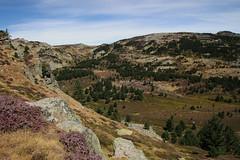 picos de urbion (Xabiaz1994) Tags: picosdeurbión soria mendia montaña mountain natura naturaleza nature travell summer summervibes sun cannon cannon7d