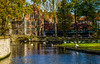 Bruges. (ost_jean) Tags: bruges brugge nature park parc swans zwanen vijver