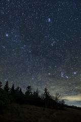 The Pleiades and Orion (snapdragginphoto) Tags: thepleiadesandorion stars betelgeuse rigel pleiades orion night nightsky roundbald northcarolina amos58