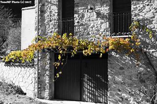 otoño sobre la puerta