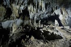 Windsor Cave III