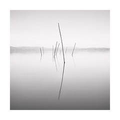 Stand out (Nick green2012) Tags: tuscany blackandwhite square longexposure fishing nets lake minimal