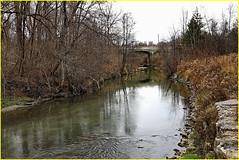 171125 East Don Parklands (51) (Aben on the Move) Tags: toronto ontario canada park nature eastdonparklands