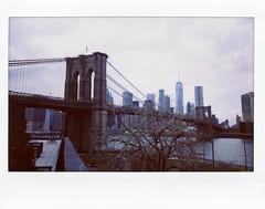 Brooklyn Bridge And Freedom Tower Viewed From Brooklyn Bridge Park; DUMBO, Brooklyn (hogophotoNY) Tags: hogophoto fuji instax 210 fujiinstax210 fujiinstaxwide wide brooklynbridgeandfreedomtowerviewedfrombrooklynbridgeparkdumbo brooklyn dumbo ny dumbobrooklyn brooklynny manhattan scan instant analog film december december2017 2017 usa newyorkstate outside gooutside instantfilm bridge newyorkbridge eastriver