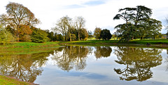 AUTUMN AT CROOME (chris .p) Tags: croome landscape worcestershire nikon d610 view autumn 2017 water reflection trees tree croomelandscapepark nt nationaltrust november