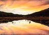 Sunset over China Lake (ihoskins57) Tags: mountians chinalake sunset lakes water canada ©nigelhoskinsphotography alberta jasper ca