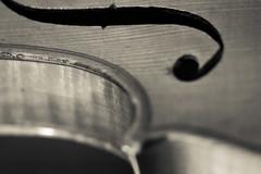 Violin (objet introuvable) Tags: blackandwhite bw nb noiretblanc monochrome macromondays macro canon canon70d