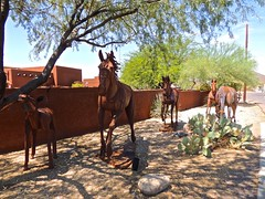 Steel Stampede (phxdailyphotolady) Tags: sculpture statue steel rusted horses cavecreek arizona