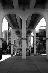 john seigenthaler pedestrian bridge (MrApplegate713) Tags: cumberlandpark bridge nashville johnseigenthalerpedestrianbridge smcpentaxm50mmf17 a7 sonya7 blackandwhite