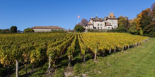 Biking around Château du Crest - 14 oktober 2017