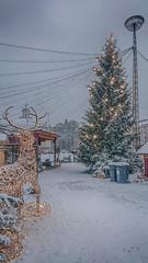 12.12.2017 Tiistai aamupäivä Tuesday forenoon Turku Åbo Finland (rkp11) Tags: turku southwestfinland finland 12122017 tiistai aamupäivä tuesday forenoon åbo lumi snow nieve neve 雪 눈 schnee снег lumisade snowfall joulukuu december diciembre dicembre 12月 十二月 12월 grudzień décembre dezember talvi winter invierno inverno 冬 冬季 겨울 hiver kış зима hdrefexpro2 hdrphotogram sonyilce5100 kännykkäkuva cellphonephoto sonyxperiaxz1compact kauppatori turunkauppatori marketplaza square tori joulutori joulunpolku christmaspath joulukuuset jouluvalot christmaslights christmastrees joulu christmas