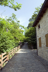 Canossa, Reggio Emilia (igorigor88) Tags: canossa reggioemilia reggio emilia emiliaromagna castello castle history storia casa house strada road sentiero path way via tree alberi nature natura verde green cielo sky blue azzurro ombre shadows light luce sun sole june giugno summer estate travel trip vacation holiday viaggio vacanza gita northitaly north italy italia landscape paesaggio view vista town paese vicolo borgo nikon nikond3300 appennino toscoemiliano reggiano