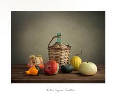 ...................... (.... belargcastel ....) Tags: bodegón still stilllife calabaza pumpkin texturas belargcastel españa galicia spain belénargüeso