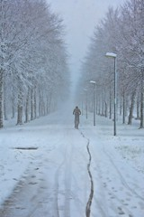 slippery (Explore) (Alex Verweij) Tags: almere lumiere park sneeuw snow slippery slippartij drunk alexverweij canon 5d spoor glad bicycle fiets fietser fietspad winter 2017 10dec2017 hardwork fietsen nr19