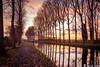 canal  l'espierre (musette thierry) Tags: lespierres canal musette thierry d600 1855mm promenade allée eau nuit soleil novembre automne landscape paysage