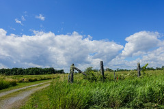 No Trespassing (gabi-h) Tags: notrespassing clouds sky fence fencefriday grass road bigisland princeedwardcounty gabih summer green whitepuffyclouds ontario landscape privateproperty