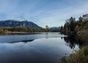 mill pond (MissLydia) Tags: birding snoqualmiefalls wastate nature birds 2017 november fall snoqualmie snohomish
