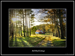 Red Roof Cottage (The Jacobite) Tags: colours red track fir cottage hidden estate scotland canon