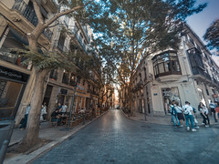 Urban walk (Alvaro RP) Tags: urban ciudad spain street calle valencia punto vanishing point fuga perspective cold warm sunset sun light buildings people pedestrians peatones afternoon europe centre