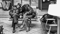 Station Lille flandres (zilverbat.) Tags: streetphotography streetlife straatfotografie streetcandid straatfotograaf streetscene streetshot scenery people peopleinthecity monochrome peopleinthestreet portrait portret photography station blackwhitephotos mono blackandwhite blackwhite zwartwitfotografie zilverbat zwartwit noir blanco black citylife urbanlife urbanvibes lille flandres france frankrijk bench city stadt centraal pancake 40mm stm timelife dog pet sleeping poverty magnum social culture