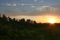 A Little Bit Of Sunshine (Daphne-8) Tags: sunrise sonnenaufgang salidadelsol leverdusoleil amanecer zonsopkomst sunup sky colours colors colores farben himmel cielo kleuren summer sommer zomer verano estate