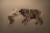 *** (sveta_butko) Tags: sea boy dog brown texture animal cute child sand warm tender childhood lying leonberger therapy