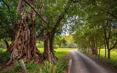 46 Durrumbul Road, Main Arm NSW