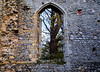 A tree through the chapel window (rustyruth1959) Tags: nikon nikond5600 tamron16300mm uk england eastanglia norfolk sheringham beestonregis beestonregispriory ruins chapel stmaryinthemeadow priorywindow ancientruins religiousbuildings wall stone flint tree arch leaves treetrunk bark outdoor historicbuilding structure building view