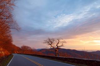 Morning Light on Skyline Drive