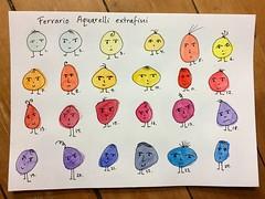 Ferrario watercolor (greendot) Tags: ferrario watercolor watercolors watercolur watercolours watercolorbox ferrariospa watercolour akvarell aquarell aquarelle akwarele