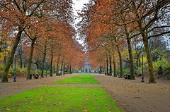 Don't Stray (Rice Bear) Tags: belgium brussels d7000 europe nikon parcdebruxelles traveldestinations autumn fall bruxelles be