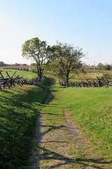 The Bloody Road (Patricia Henschen) Tags: antietam nationalbattlefield civilwar sharpsburg maryland nationalparkservice nps battlefield cornfield rural usa pathscaminhos