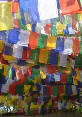 Darjeeling (norman preis) Tags: d meurig normanpreis travel trafeilio trip taith backpacking gaeaf winter 2015 india gwylia gwyliau holiday darjeeling christmas nadolig dolig dafydd