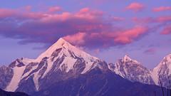 After sunset (Gloaming at Panchachuli) (draskd) Tags: aftersunset panchachuli munsiyari munsiari uttarakhand sunset snowcapped colourofsunset draskd nikon mountainview kumaonrange himalayas himalayanscene gloaming evening duskphoto