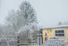Unser Garten (Dez. 2017) (Günter Hentschel) Tags: garten garden gartenhaus winter schnee snow gelb unsergarten deutschland germany germania alemania allemagne europa nrw nikon nikond5500 d5500 hentschel outdoor