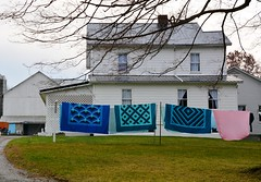 Handmade Quilts. New Wilmington, PA (bobchesarek) Tags: quilts amish padutch bedspread autumn country rural laundry buggy pennsylvania