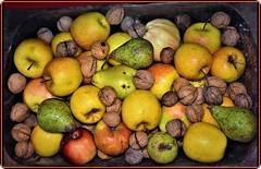 Rich autumn (Ioan BACIVAROV Photography) Tags: fruit fruits autumn rich pear