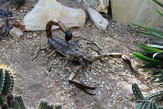 Brontoscorpio (Brontoscorpio anglicus)