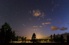 Perseids, Stars and Trails (TigerPal) Tags: banffnationalpark banff canmore willowcreek silhouette silhouettephotography stars astrophotography trails lighttrails tree perseid perseids meteor rockymountains rockies