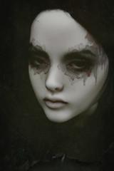 Fiamma (dolls of milena) Tags: bjd resin doll portrait narae60s bimong