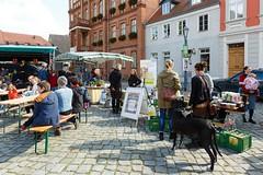 """Abschluss Wandelwoche auf dem Markt der regionalen Möglichkeiten in Kyritz 2017 • <a style=""""font-size:0.8em;"""" href=""""http://www.flickr.com/photos/130033842@N04/24518899878/"""" target=""""_blank"""">View on Flickr</a>"""