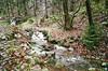 Bach (Turikan) Tags: olympus mju i fuji natura 800cn brocken harz kalt nass diesig eiskalt windig