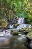 Ribeira de Santa Cruz (Luis Ftas) Tags: madeira madeiraisland luisftas luís freitas photos ribeira de santa cruz cascata geocaching discover