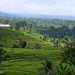 10-10-25 Indonesia (65) Bali R01