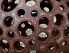 The plan for a steel hot air balloon had a few holes in it (Grooover) Tags: metal steel rust holes sphere ball prague czech republic grooover