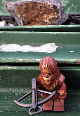 Hi there! (NoeTum) Tags: figure lego starwars pentax wookie wg2